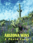 Arizona WIns cover